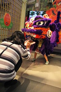 Lion Dance 4 thumb