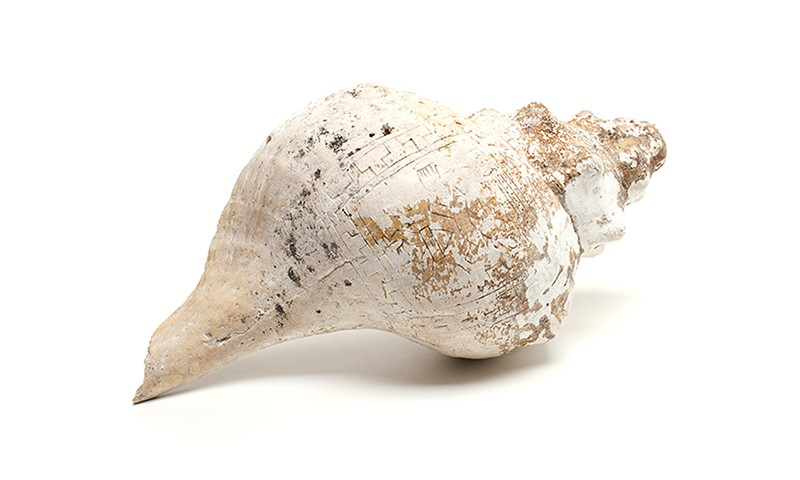 Call of the Sea: Shell Instruments from Western Mexico